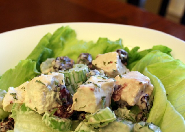 Photo credit: http://chocolatepennies.com/new-west-chicken-salad/